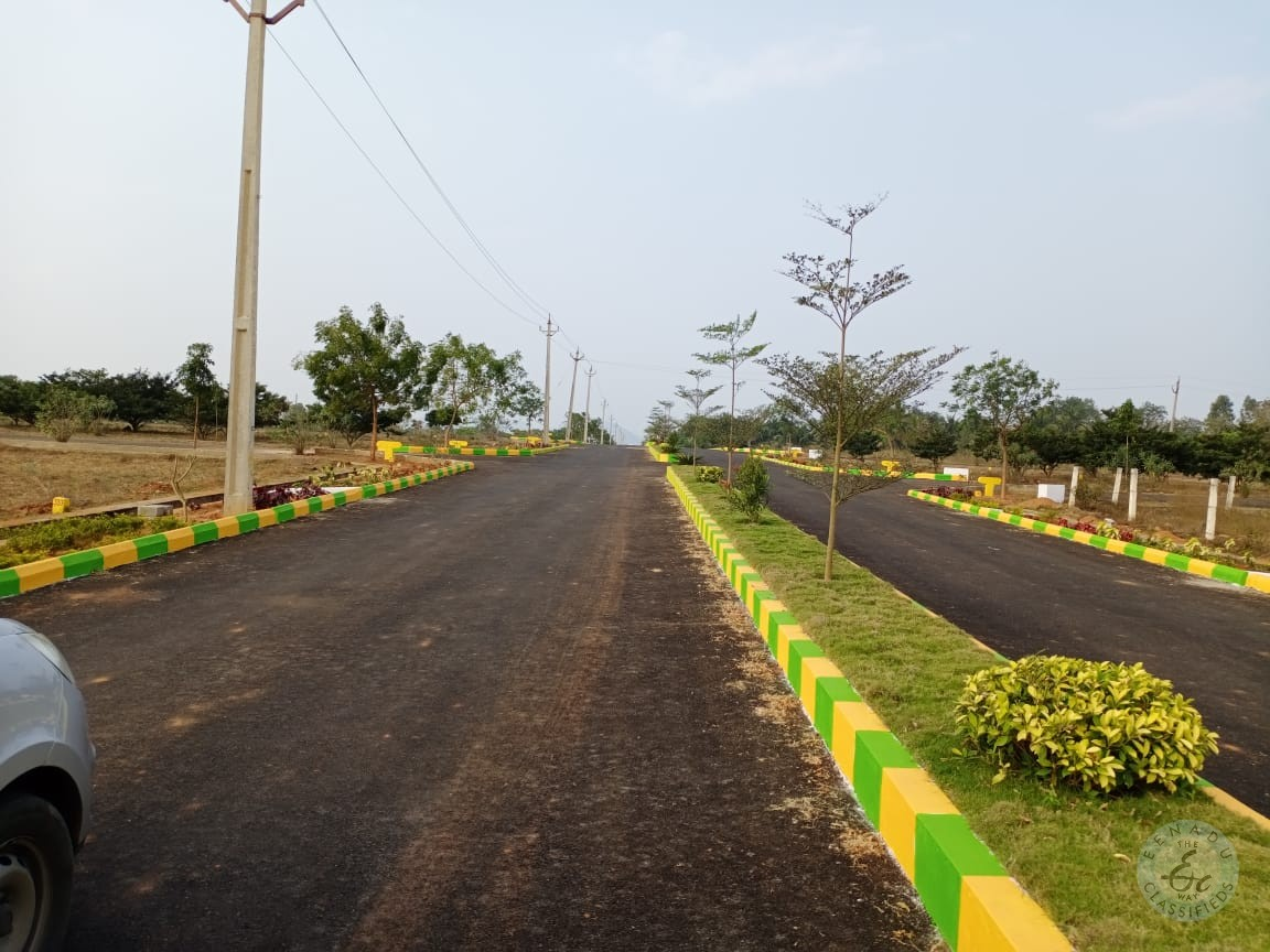 Plot For Sale In Korukonda Vizianagaram