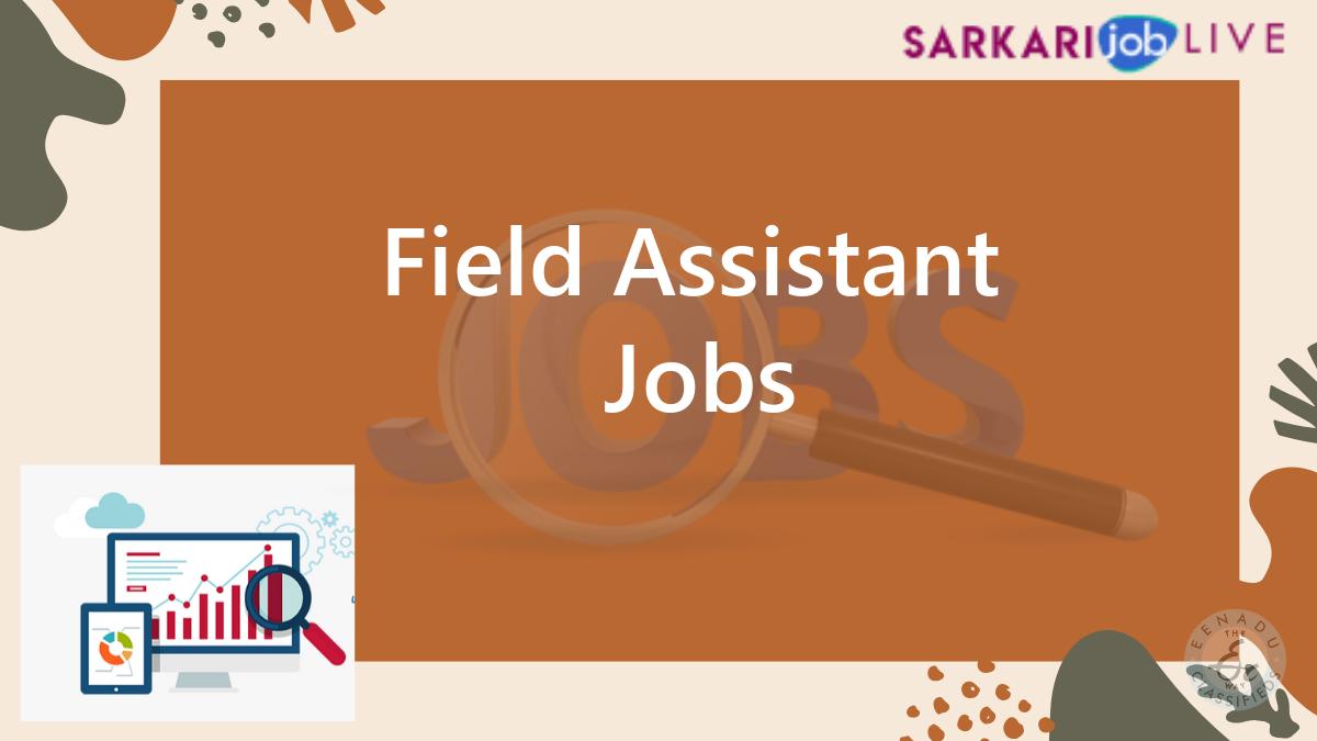Field Assistant Jobs In Guntur