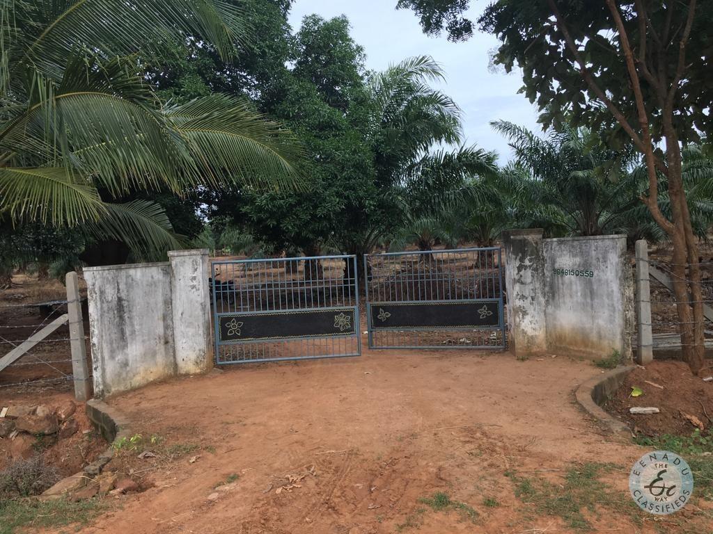 Land For Sale In Vijayarai West Godavari