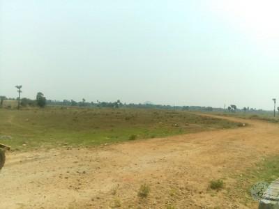 Residential Land For Sale At Pydibheemavaram