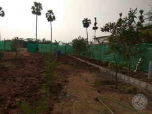 1,224 Square Yards Plot For Sale