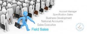 sales executive.