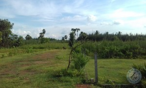 plot for sale in narsipatnam highway visakhapatnam