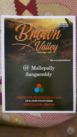 residential plots for sale in mallepally sangareddy