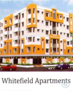 1BHK flat for rent in guntur