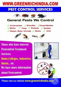 pest control services in visakhapatnam