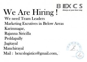 Team Leaders & Marketing Executive Jobs In Karimnagar