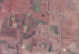 Agriculture Land For Sale In Nagandla Prakasam