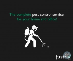 pest control service for cockroach killers in hyderabad