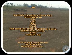 Realestate Consultant In Guntur