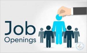 Jobs In Hyderabad For Php Developers