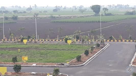 Plots For Sale In Amaravathi Krishna