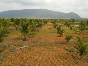 Plots For Sale In Tattabanda Visakhapatnam