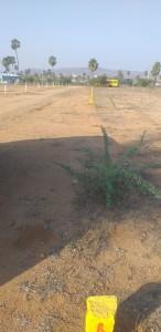 plots for sale in gayathrinagar hayathnagar hyderabad