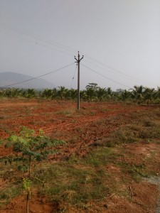 Farm Plots For Sale In Tattabanda Visakhapatnam