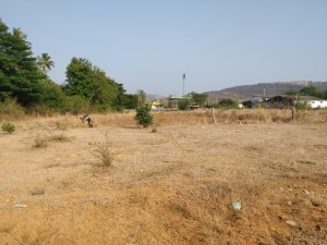 plots for sale in penumuru chittoor