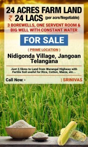 Land For Sale In Nidigonda Warangal