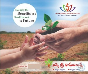 Farm Land For Sale In Kanigiri Prakasam