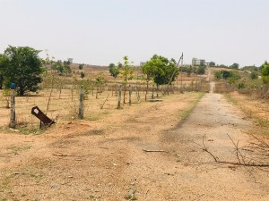 Plots For Sale In Paradise Sector Hyderabad