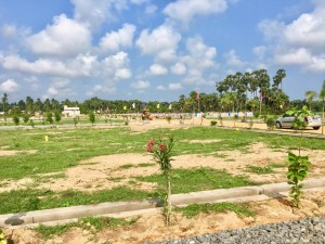 Land For Sale In Bhogapuram Highway Pusapatirega Vizianagaram