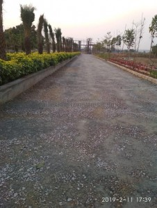 plots for sale in sangareddy