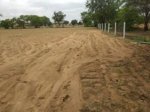 Agriculture Land For Sale In Gajwel Medak