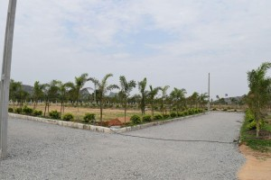 Plots For Sale In Kothur Hyderabad
