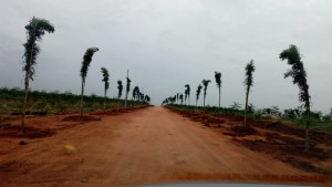 Land For Sale In Poleypally Sez Hyderabad