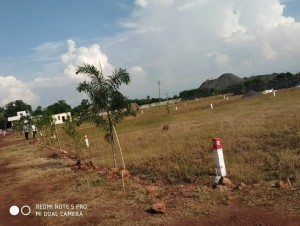 Plots For Sale In Kodurupadu Krishna Amaravati Vijayawada
