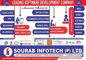 Software Developer Jobs In Krishna Amaravati Vijayawada