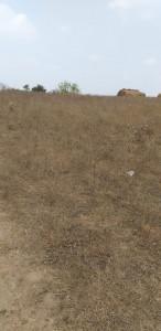 Agricultural Land For Sale In Alur Mahaboobnagar