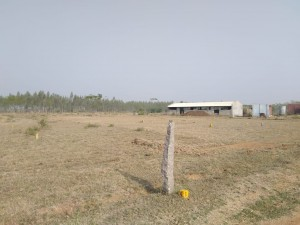 Plots For Sale In Yadagirigutta Nalgonda