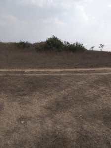 Agricultural Land For Sale In Aloor Mahaboobnagar