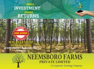 Plots For Sale In Narayanakhed Medak