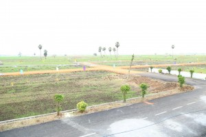 Plots For Sale In Maanikonda Vijayawada