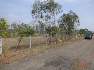Plots For Sale In Santhapeta Visakhapatnam