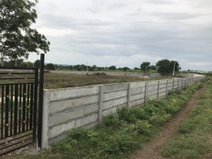 Agricultural Land For Sale In Shankarpally Hyderabad