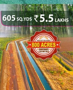 Land For Sale In Jangaon