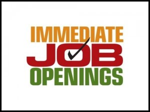 business development executive jobs in karnataka