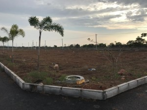Plots For Sale In Bhogapuram Vizianagaram