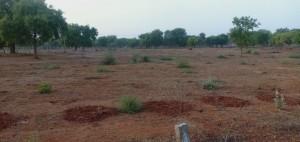 Plots For Sale In Shameerpet Hyderabad