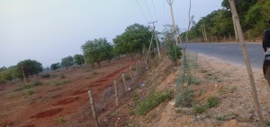 Plots For Sale In Shamirpet Hyderabad