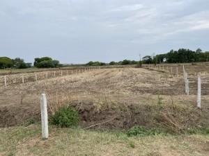 Farm Land For Sale In Patancheru Hyderabad