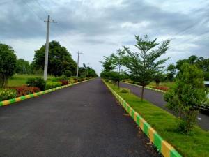 Land For Sale In Tagarapuvalasa Visakhapatnam