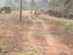 Land For Sale In Ranasthalam Srikakulam