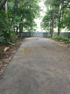 Plots For Sale In Bachupally Hyderabad