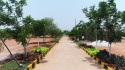 Open Plots For Sale In Near Outer Ring Road Hyderabad