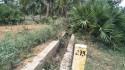 Coconut Garden For Sale In Bheemili Visakhapatnam